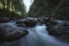 Cascada Fraser Valley del noroeste pacífico Imágenes de archivo libres de regalías