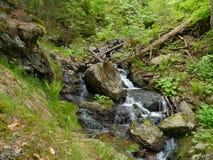 Cascada Höllbachgspreng, macizo enselvado de la roca imagen de archivo libre de regalías
