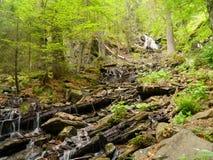 Cascada Höllbachgspreng, macizo enselvado de la roca imagenes de archivo