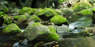 Cascada hermosa Imagen de archivo libre de regalías