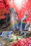 Cascada hermosa con el foco y el arco iris suaves en el bosque, concepto del negocio Fotos de archivo libres de regalías
