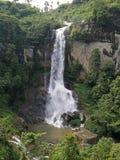 Cascada hermosa de la mañana en Sri Lanka fotografía de archivo libre de regalías