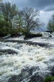 Cascada hermosa de la primavera Imagenes de archivo