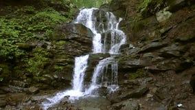 Cascada hermosa de Shipot del lugar en los Cárpatos, Ucrania Cámara lenta almacen de video