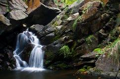 Cascada hermosa del bosque Imagen de archivo libre de regalías