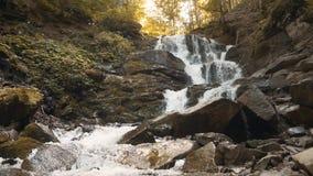 Cascada hermosa del bosque metrajes