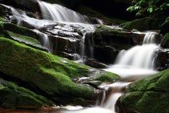 Cascada hermosa del MOS Imagen de archivo libre de regalías