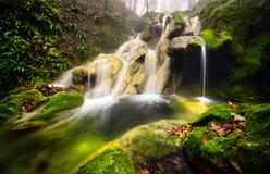 Cascada hermosa del paisaje de Rumania en el bosque y el parque natural natural de Cheile Nerei Foto de archivo libre de regalías