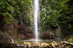Cascada hermosa el levada de la ruta que camina 25 fuentes, isla de Madeira, Portugal Fotografía de archivo