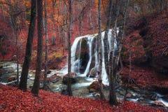 Cascada hermosa en bosque del otoño en montañas crimeas en el sol Imágenes de archivo libres de regalías