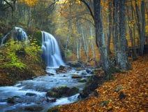 Cascada hermosa en bosque del otoño en montañas crimeas en el sol Imagenes de archivo