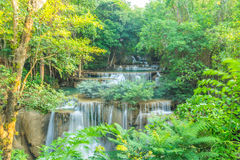Cascada hermosa en bosque profundo Fotos de archivo