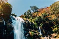 Cascada hermosa en bosque profundo fotografía de archivo