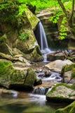 Cascada hermosa en el bosque fotos de archivo