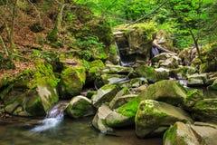 Cascada hermosa en el bosque fotografía de archivo libre de regalías
