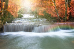 Cascada hermosa en foco suave con el arco iris en el bosque Fotos de archivo