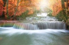 Cascada hermosa en foco suave con el arco iris en el bosque Foto de archivo libre de regalías