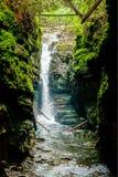 Cascada hermosa en la naturaleza salvaje Foto de archivo libre de regalías