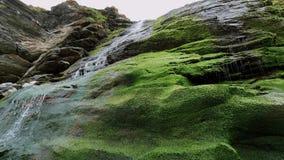 Cascada hermosa sobre piedras cubiertas de musgo en la ensenada de Tintagel en Cornualles almacen de metraje de vídeo