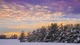 Cascada hivernal metrajes