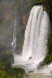 Cascada Iguacu Fotos de archivo libres de regalías