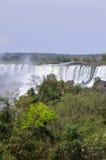 Cascada Iguacu Imagen de archivo libre de regalías