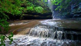 Cascada Illinois del parque de estado de Matthiessen