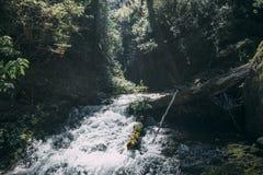 Cascada stock photos