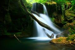 Cascada La Vaioaga Royaltyfri Foto