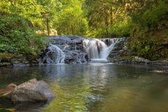 Cascada a lo largo de la cala dulce en el primer de Oregon Imagenes de archivo