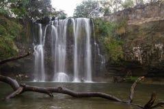 Cascada magnífica en Costa Rica imagen de archivo