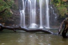 Cascada magnífica en Costa Rica fotografía de archivo