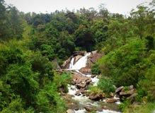 Cascada natural en Sri Lanka fotos de archivo