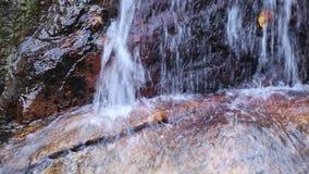 Cascada natural y agua dulce pura que fluye con la hoja y la piedra Cascada Sunlit almacen de video