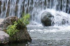 Cascada, naturaleza, piedra Imagenes de archivo
