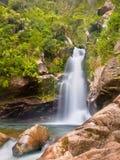 Cascada Nueva Zelanda de la selva tropical foto de archivo libre de regalías