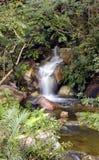 Cascada pacífica Fotografía de archivo libre de regalías