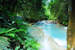 Cascada pacífica de la cascada Imagen de archivo libre de regalías