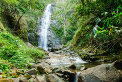 Cascada profunda del bosque Fotografía de archivo libre de regalías