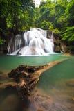 Cascada profunda en Kanchanaburi, Tailandia del bosque Fotografía de archivo