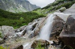 Cascada pura en las montañas Foto de archivo libre de regalías