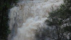 Cascada que burbujea en la selva, Tailandia almacen de video