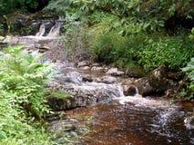 Cascada que fluye rio abajo fotos de archivo