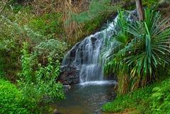 Cascada remota en selva tropical en Hawaii Fotos de archivo libres de regalías