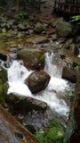 Cascada rocosa Fotografía de archivo