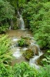 Cascada rodeada por los bosques y las montañas imagen de archivo