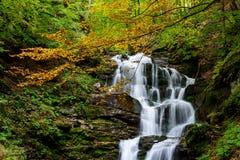 Cascada Shypit, cascada en Pylypets en la carpa del bosque del otoño Fotografía de archivo