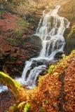 Cascada Shypot en otoño fotografía de archivo libre de regalías