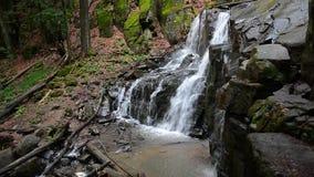 Cascada Skakalo en bosque profundo de la haya almacen de video
