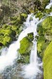 Cascada Skaklia, pueblo de Bov, garganta de Iskarsko Fotos de archivo libres de regalías